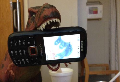 Rexford, Rexford Dinosaur, Cat, Samsung Intensity III, Dinosaur Toys