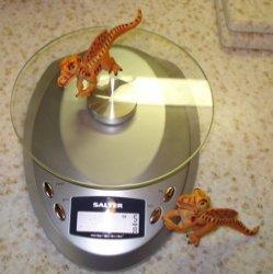 Spinosaur Dinosaur Toys