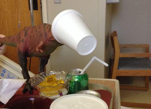 Rexford, Rexford Dinosaur, Styrofoam Cup, Dinosaur Toys