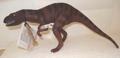 Dinosaur Toys Schleich Allosaurus