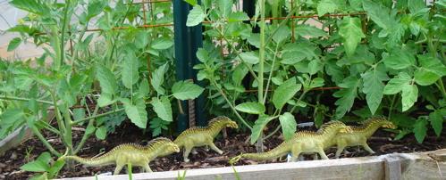 Amargasaurus, carnegie collection, Dinosaur Toys