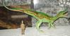 Baryonx Dinosaur Toys