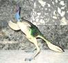 Carnegie Caudipteryx Dinosaur Toys