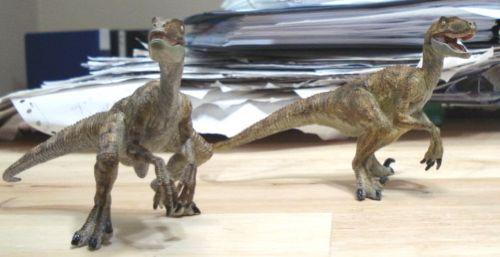 Dinosaur Toys, Papo, Velociraptor, Raptor