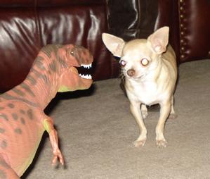 apex predator Dinosaur Toys