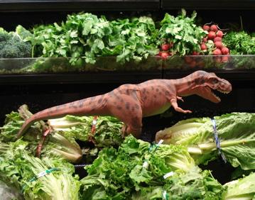 Tyrannosaur Rex Dinosaur Toys