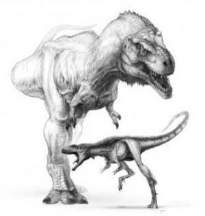 Raptorex, Rexford, Dinosaur Toys