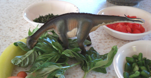 Safari Nigersaurus, Dinosaur Toys