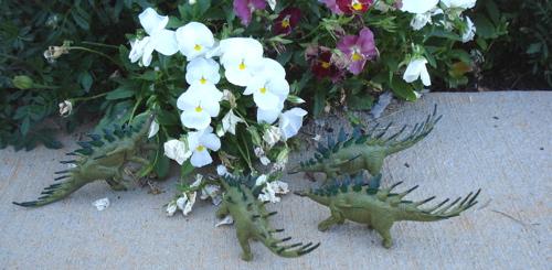 Kentrosaurus, Dinosaur Toys