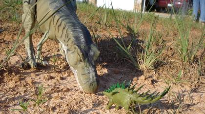 JP29, Kentrosaurus, Dinosaur Toys
