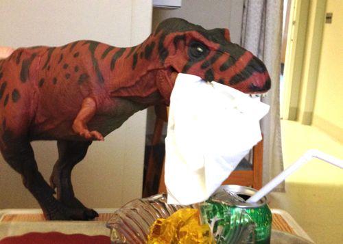 Rexford, Rexford Dinosaur, Napkin, Dinosaur Toys
