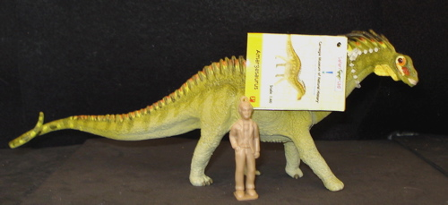 Amargasaurus, Dinosaur Toys, carnegie collection