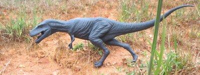 Dinosaur Toys Albertosaurus