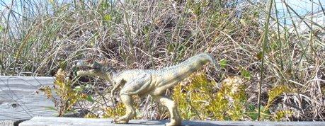 Papo, Allosaurus, Dinosaur Toys