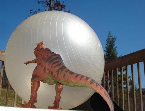 Rexford, Asteroid Dinosaur Toys