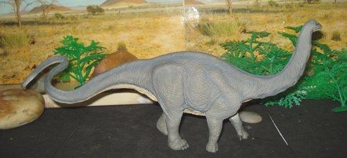 Safari Apatosaurus, Sauropod, Dinosaur Toys