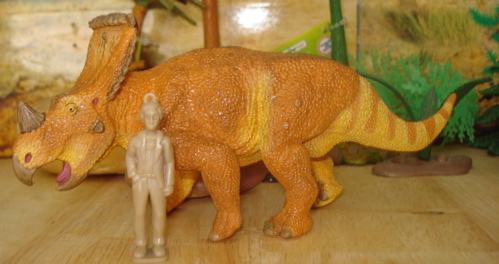 Vagaceratops, Safari Vagaceratops, Safari Dinosaur Toys