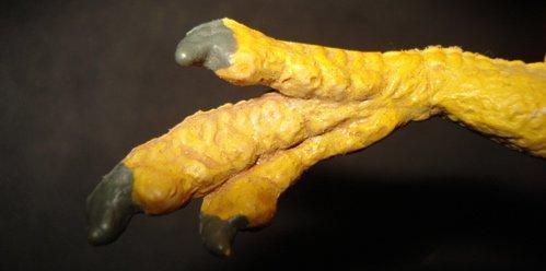 Raptor Dinosaur Toys