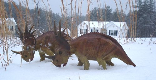 Styracosaurus, X-Plus Styracosaurus, Dinosaur Toys